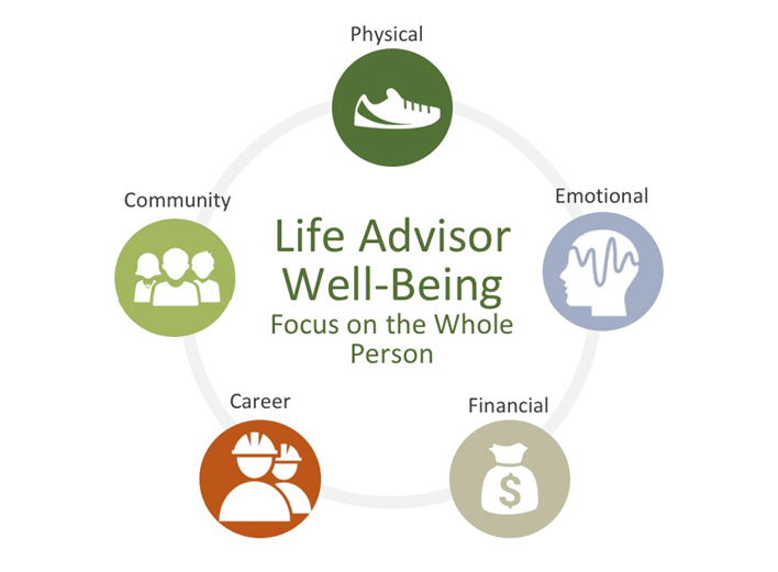 Life Advisor Wellness Wheel